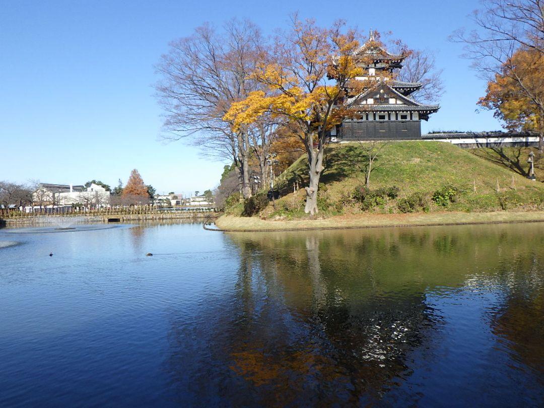 高田公園内堀護岸築造工事 完成後写真